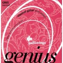 Jeu cordes Galli Genius GR65 Normal Tension